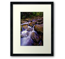 """Slippery"" Framed Print"