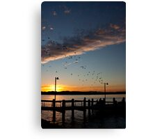 Port Macquarie Sunset Canvas Print