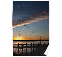 Port Macquarie Sunset Poster