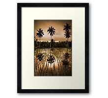 Coconut and Rice Framed Print