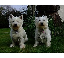 Evie and Hamish Photographic Print