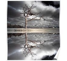 The Whispering Tree Poster