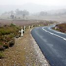Road from Queenstown - Tasmania, Australia by pocketdelight