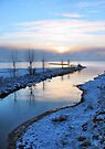 Winter Morning by Jo Nijenhuis
