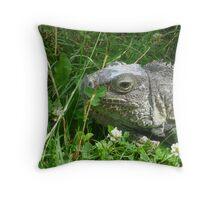 Iguana - Colchester Zoo Throw Pillow