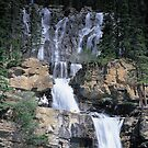 Tangle Falls by Graeme Wallace