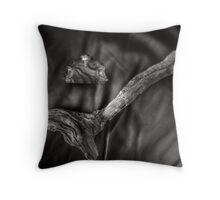 Glass Deco, Drift Wood & Hide  Throw Pillow