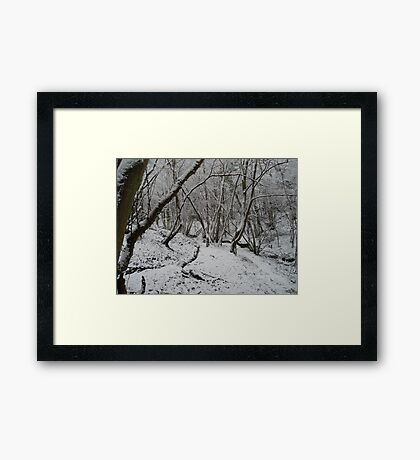 """On winter afternoons"" Framed Print"