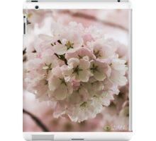 Blossom Ball iPad Case/Skin