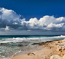 Winter Beach by Benjamin Gelman