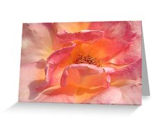 PINK RAY... Greeting Card