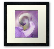 The Simple Elegance of Violet Framed Print
