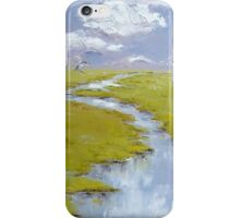 Sandhill Cranes iPhone Case/Skin