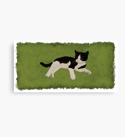 Zorro Kitten - Green Canvas Print