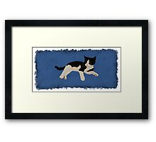 Zorro Kitten - Blue Framed Print