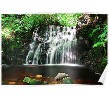 Dappled Waterfall Poster