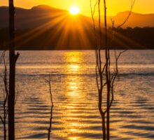Golden Sun at Lake Moogerah Sticker
