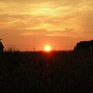 Farmer's Sunset by OvertPictures
