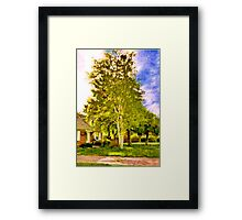 House near two birches Framed Print