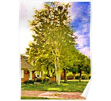 House near two birches Poster
