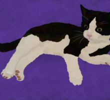 Zorro Kitten - Purple Sticker