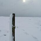 Portsmouth. Farlington Marshes in Winter. (II) by John Callaway
