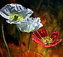 California Poppy by LudaNayvelt