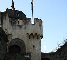 Marksburg Tower by elthar