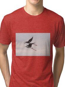 Stilt Duo Tri-blend T-Shirt