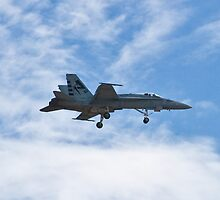 F/A - 18 Superhornet landing during Red Flag 10-2 by Henry Plumley