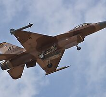 Desert camouflaged F-16 Fighting Falcon landing during Red Flag 10-2 by Henry Plumley