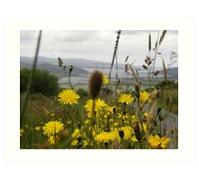 Flora - Burt Co. Donegal Ireland Art Print