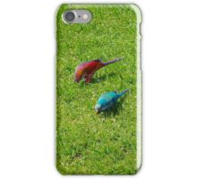 Pair of colourful parrots in Buenos Aires iPhone Case/Skin