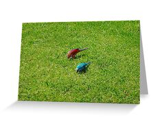 Pair of colourful parrots in Buenos Aires Greeting Card