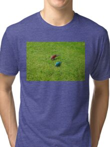 Pair of colourful parrots in Buenos Aires Tri-blend T-Shirt