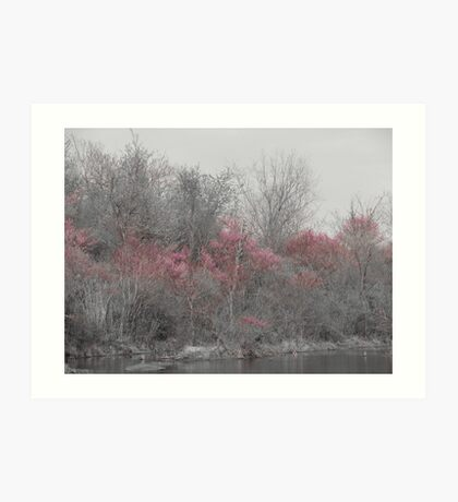 Colorful trees Art Print