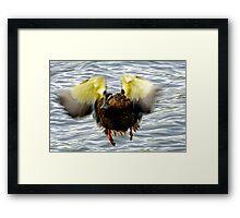 Goofy Duck - Framed Print