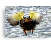 Goofy Duck - Canvas Print