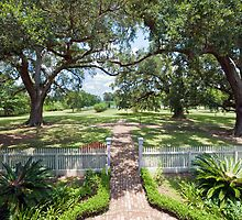 Veranda View: Laura Creole Plantation, Vacherie, Louisiana by Bonnie T.  Barry