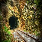 Doe River Gorge Tunnel by C David Cook