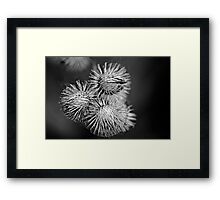 attachment Framed Print