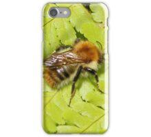 Fern & Bee iPhone Case/Skin