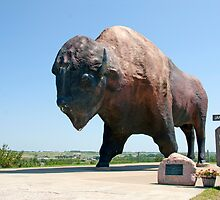 World's Largest Buffalo by James  Birkbeck