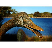 Swan Sculpture Photographic Print