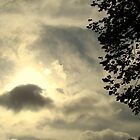 Cloudy Night (Please View In Larger Size) by Wanda Raines