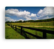 Summer in the Country Canvas Print