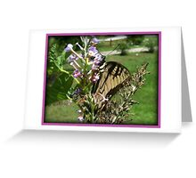 Butterfly Wings Series Greeting Card