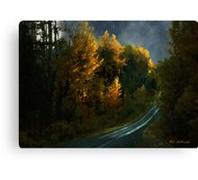 Harvest Moon (Another Starry Night) Canvas Print