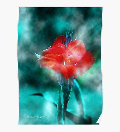 ~ Calla In The Mist ~ Poster