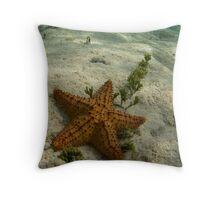 Starfish at Owen Island Throw Pillow